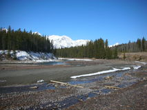 Free Canadian Rockies Stock Photography - 8356982