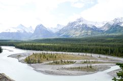 Canadian Rockies, Autumn Scenery of Icefields Parkway. Alberta, Canada royalty free stock images