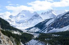 Canadian Rockies, Autumn Scenery of Icefields Parkway. Alberta, Canada royalty free stock photography