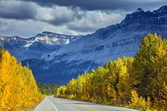 Canadian Rockies, Banff National Park in the autumn royalty free stock image