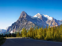 Canadian Rockies. Beautiful mountain and forest in Canadian Rockies stock photo