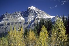 Canadian Rockies, fall colors stock photography