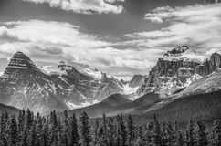 Canadian Rockies Icefields Royalty Free Stock Photos