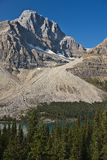 Canadian Rockies - Jasper National Park Royalty Free Stock Image