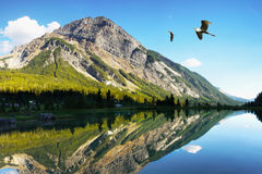 Canadian Rockies Lake Mountains Royalty Free Stock Photography