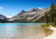 Canadian Rockies Panorama, Bow Lake Royalty Free Stock Photo