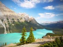 Canadian Rockies, Peyto Lake Stock Photos