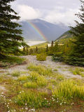 Canadian rockies Rainbow Icefields Parkway Royalty Free Stock Photography