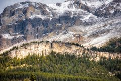 Canadian Rockies - Rampart Creek Royalty Free Stock Photo