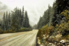 Canadian Rockies snowing Royalty Free Stock Photos
