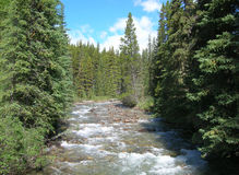 Canadian Rockies stream Stock Image