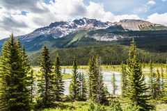 Canadian Rocky landscape Royalty Free Stock Images