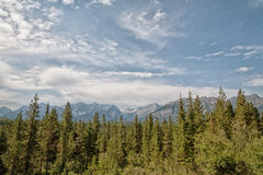 Canadian Rocky Mountain Landscape. Forested Canadian rocky mountain landscape in Kananaskis Royalty Free Stock Photo