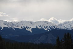 The Canadian Rocky Mountains. The Eastern peaks of the Canadian Rocky Mountains near Jasper Alberta Royalty Free Stock Photography