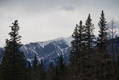 The Canadian Rocky Mountains. The Eastern peaks of the Canadian Rocky Mountains near Jasper Alberta Stock Images