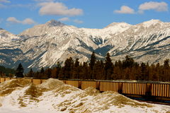 Canadian Rocky Mountains Train. Mountains and wild forests are natural treasure of canada, Train travels through the mountains Royalty Free Stock Photos