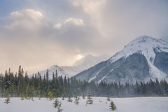 Canadian Rocky Mountains in Winter. Snowing in the Rocky Mountains.  Snowy landscape in the Canadian Rocky Mountains Stock Images