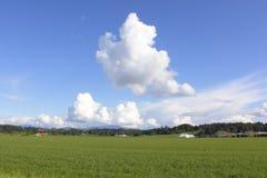 Canadian Rural Landscape Stock Images