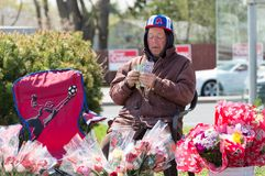 Canadian Senior Citizen Selling Flowers on Mother's Day Stock Photo
