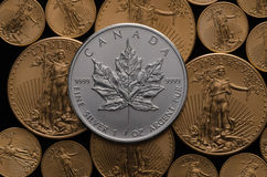 Canadian Silver Maple Coin over bed of Gold Eagle Coins royalty free stock images