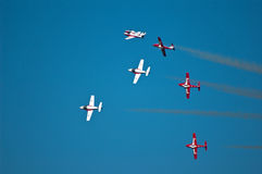 Canadian snowbirds Stock Photos