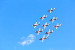 Canadian Snowbirds Show Royalty Free Stock Photography