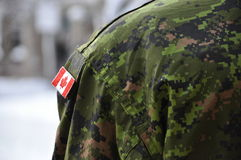 Canadian Soldier Standing Guard Royalty Free Stock Image