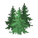 Canadian spruce. Canada single icon in cartoon style vector symbol stock illustration web. Royalty Free Stock Images