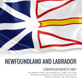 Canadian state Newfoundland and Labrador flag. Royalty Free Stock Photography