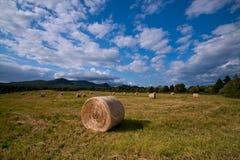 Canadian Summer Landscape Stock Photo