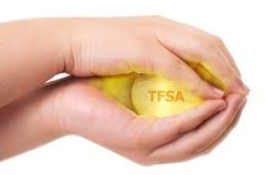 Canadian Tax-Free Savings Royalty Free Stock Photos