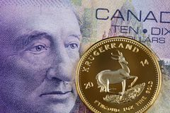 Canadian ten dollar bill with a gold one ounce krugerrand stock images
