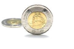 Canadian Two Dollar Coin. On white background Stock Images