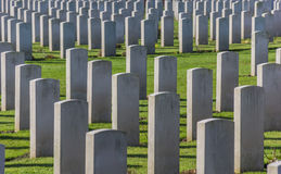 Canadian war graves Royalty Free Stock Photo