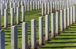 Canadian war graves Royalty Free Stock Images