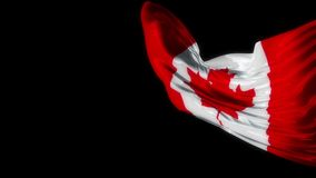 Canadian Waving Realistic Flag stock video footage
