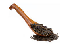 Canadian wild rice Stock Image