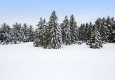 Canadian winter Royalty Free Stock Photo