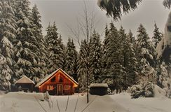 Canadian Winter Log Cabin Scene. The lights of an inviting log cabin add warmth to a  landscape of snow draped evergreens set against a backdrop of winter white Stock Images
