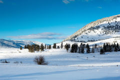 Canadian Winter Scene Royalty Free Stock Photography