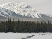 Canadian Winter Wonderland. Winter in Canada. Winter in Banff Alberta Canada. Canadian Winter Wonderland stock photo