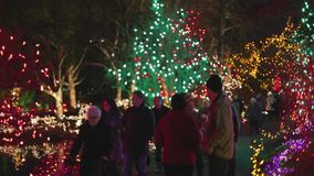 Canadians at colorful Vandusen festival of lights botanical garden. VANCOUVER,CANADA - CIRCA December 2014 :Canadians at colorful Vandusen festival of lights stock video footage