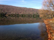 Canadice Lake, one of New York`s Finger Lakes. Bare trees on the shore of the clear, still water of Canadice Lake, one of Finger Lakes in New York, in horizontal royalty free stock photos