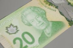 Canadiense veinte dólares en fondo gris imagen de archivo