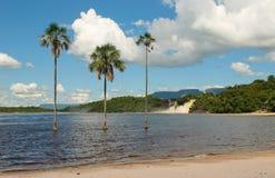 canaima盐水湖委内瑞拉 库存图片