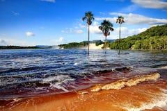 Canaima盐水湖,委内瑞拉 图库摄影