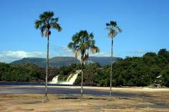 canaima Zdjęcie Royalty Free