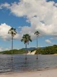 Canaima lagoon, Venezuela Royalty Free Stock Images