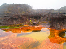 Canaima Nationaal Park venezuela Royalty-vrije Stock Foto's