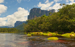 Canaima National Park, Venezuela Royalty Free Stock Images